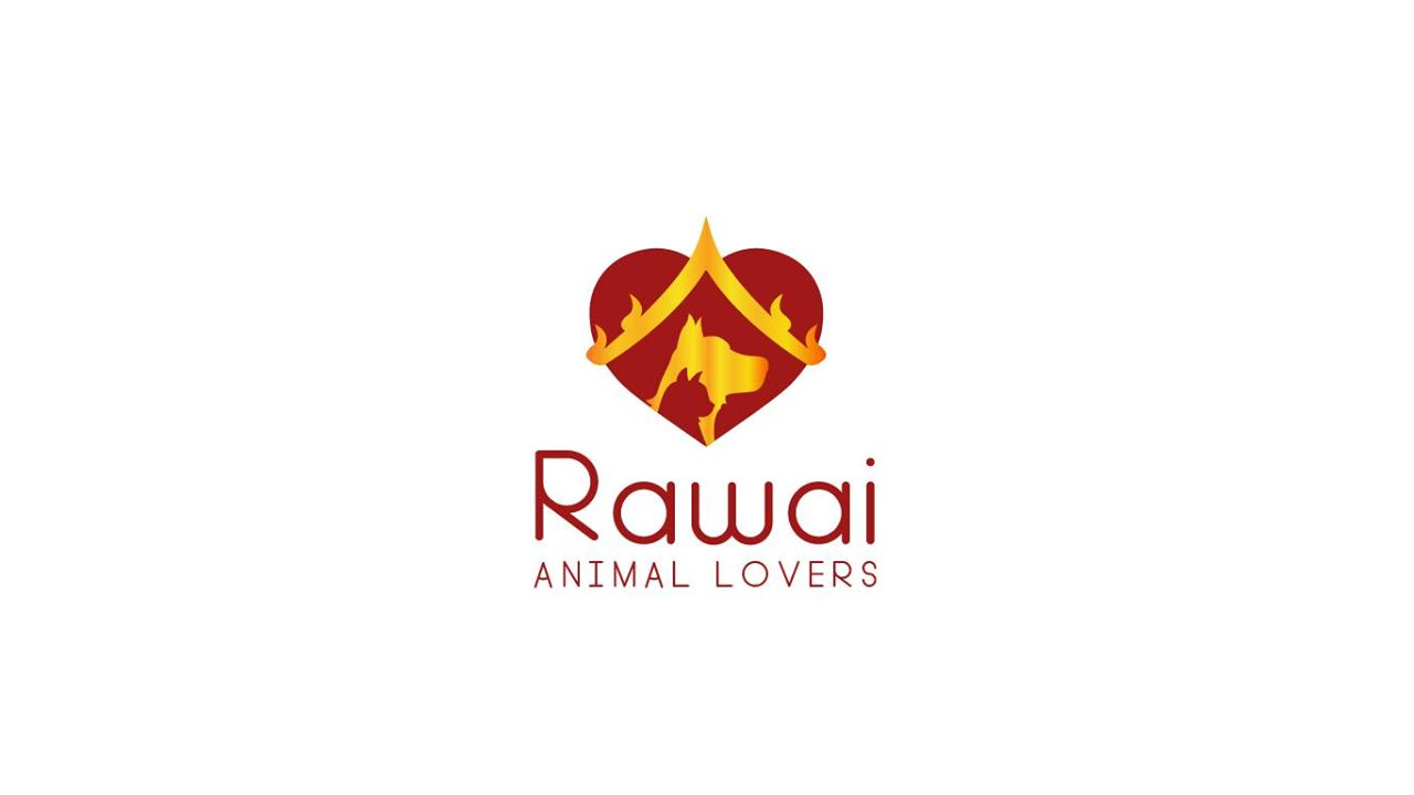 You are currently viewing You Holiday, Draco Charters Donates to Rawai Animal Lovers